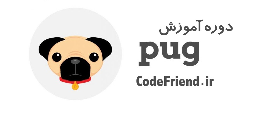Codefriend_pug