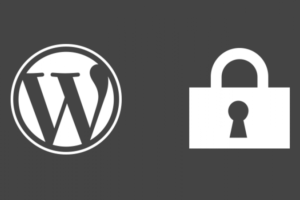 wordpress-security-plugins-31vrfq9mcc22h7u3b4b28a