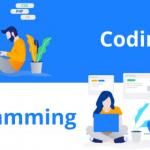تفاوت برنامه نویسی و کدنویسی که باید بدانید